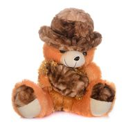 Kaku Teddy with Holding Toffi with Adorable Cap_DKK-16 A