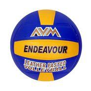 AVM Multicolor Multicolor Endeavour Volleyball - Size 5,  Dia 2.5 cm