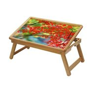 Shopper52 Foldable Wooden Study Table For Kids-STUDY009