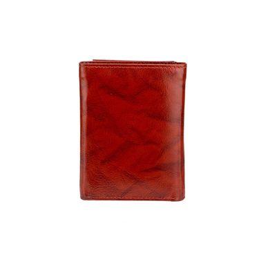 Swiss Design Stylish Wallet For Men_Sdw31400br - Brown
