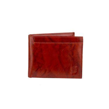 Swiss Design Stylish Wallet For Men_Sdw31380br - Brown