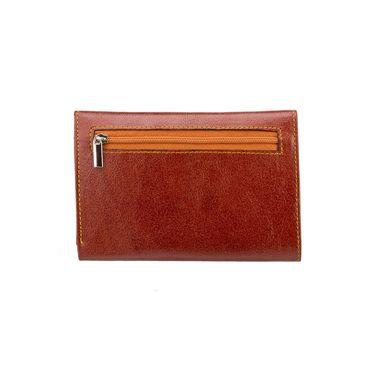 Swiss Design Stylish Wallet For Men_Sdtw15650tn - Brown