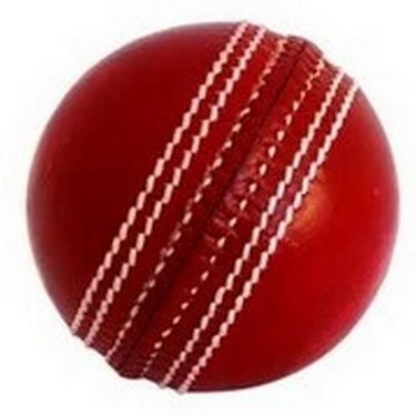 Facto Power Two Piece Cricket Leather Ball (2 Balls)