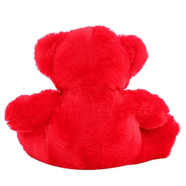 Rose Bear Valentine Stuff Teddy 25 Cms