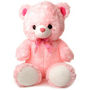 Teddy Bear 48 Inches - Pink