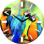 meSleep Parrot Wall Clock With Glass Top-WCGL-01-47