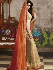 Zoom Fabrics Georgette Embroidered Saree -N1617